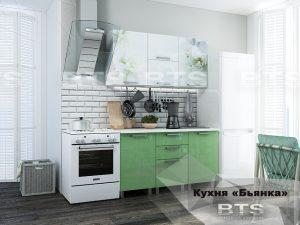 Кухня 1,5м Бьянка (салатовые блестки/фотопечать)